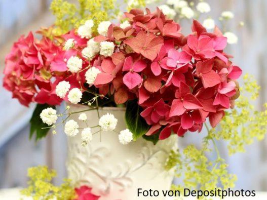 HP Blumen