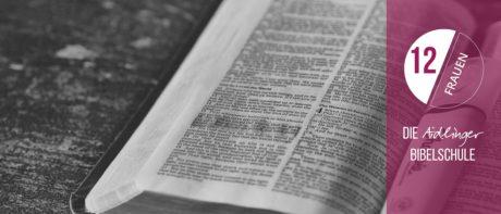 Bibel 12Er