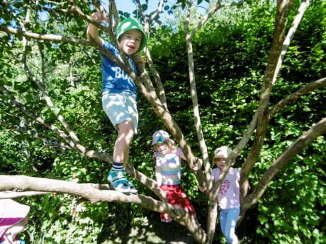 Kita Villingen Kinder Auf Baum